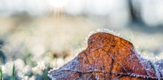 Det kan være nødvendigt med varme fra en terrassevarmer i de kolde måneder